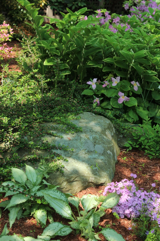 rock-in-shade-garden