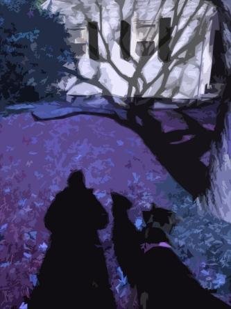 purple-shadows-dog-branches-deemallon
